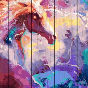 Pictura pe numere Lemn-Magic Horse